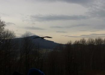oboz-rekreacyjno-narciarski-ustron-2014136